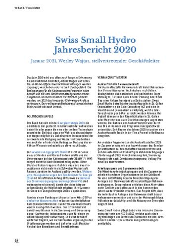 Jahresbericht SSH 2020_DE